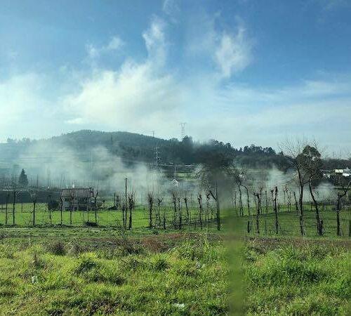Wild und rau wirkt der Norden von Portugal. Und doch gleichzeitig wunderschön.