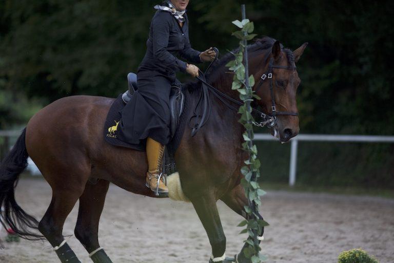 Reiterin auf spanischem Pferd bei Working Equitation Parallelslalom bei Picadera