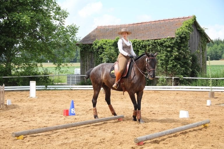 Reiterin auf spanischem Pferd bei Working Equitation Sidepass bei Picadera