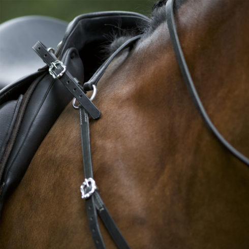 Barockvorderzeug Corelli in Schwarz Silber am Pferd Picadera