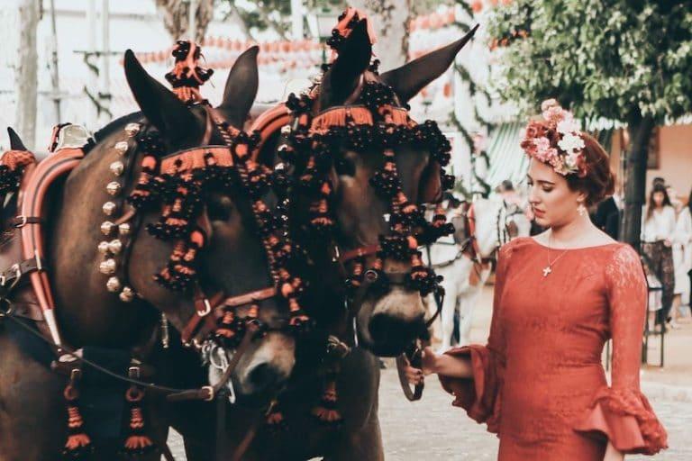 Pferdefest Feria del Caballo in Jerez Spanien im Picadera Blog
