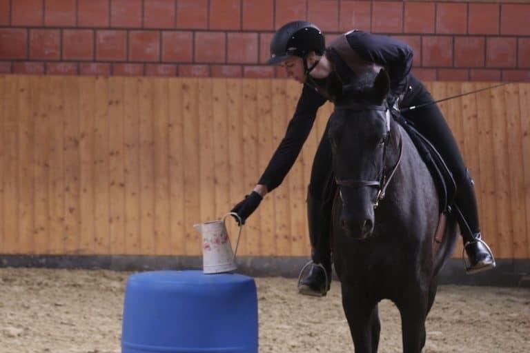 """Pferd und Reiterin bei der Working Equitation Aufgabe """"Der Krug"""""""