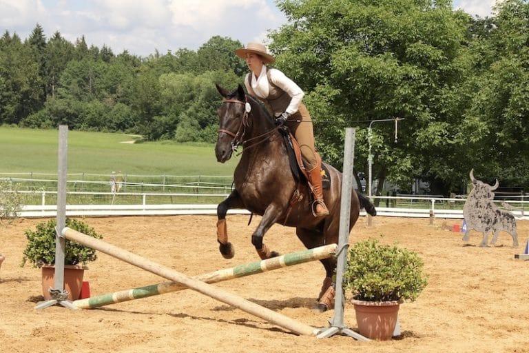 Spanisches Pferd mit Reiterin beim Sprung