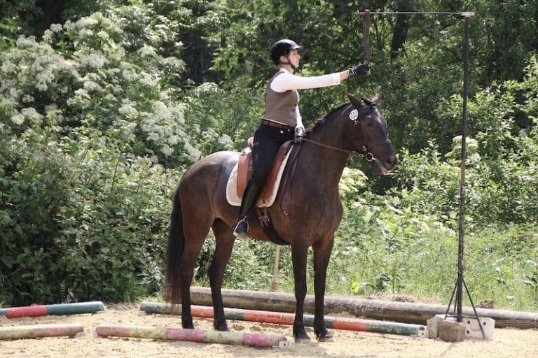 Reiterin mit spanischem Pferd bei der Glockengasse